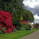 The gardens at Arley Hall by Michael Schofield