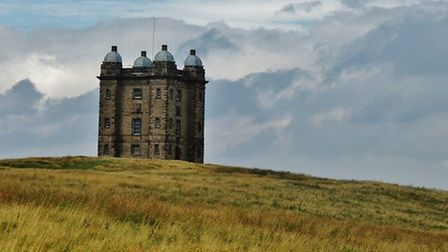 The Cage at Lyme Park by Kate Warrington