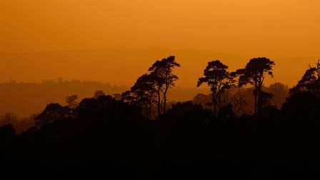 Sunset over Ashdown Forest by Tom Lee (creativecommons.org/licenses/by-nd/2.0/) via flic.kr/p/qPtU8r
