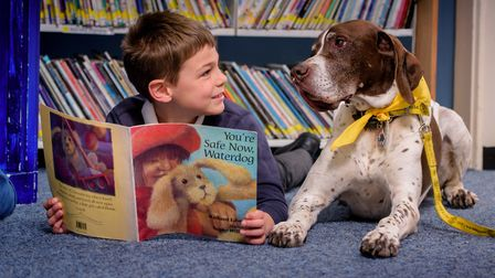 Taboo the dog who helps children reading (Photo by Jim Holden)