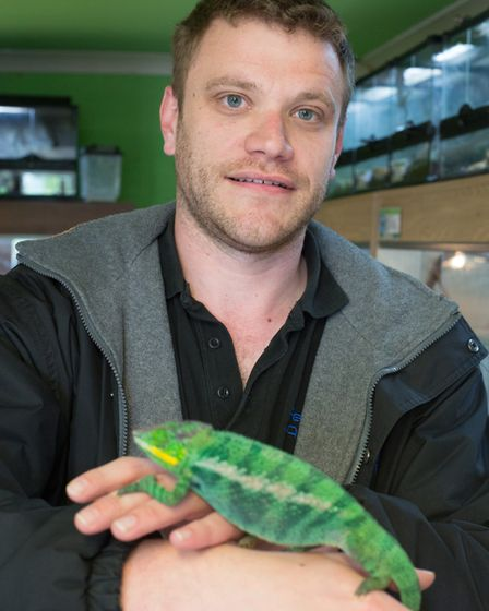 Andrew Stratton holds a Panther chameleon