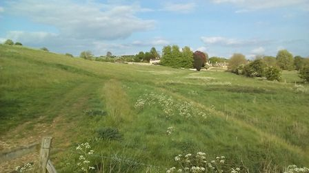 The meadow, looking back to St Mary's