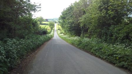 The lane from Asthall to Swinbrook