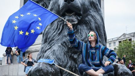 Pro-EU campaigner at a rally in London. Photograph: Simon Goldsworthy/Flickr.