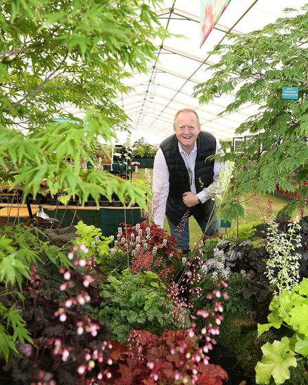 Richard Fox of Plantagogo in Crewe won a Gold Medal in the Floral Marquee