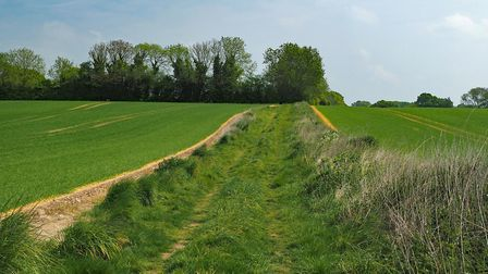 The walk meanders through fields on its way towards Park Farm at Point 3