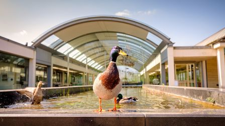 The Millennium Seed Bank opened in 2000 (Photo by Jim Holden)