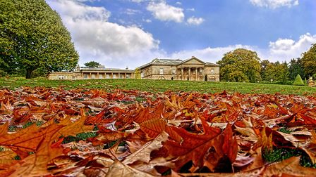 Autumn leaves have fallen at Tatton Park (Photograph by David Dukessell)