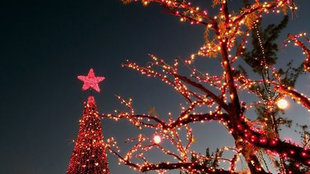 Christmas lights © PureStock /GettyImages