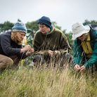 Surveying for plants and animals, just one of the many opportunities available to volunteers (photo: