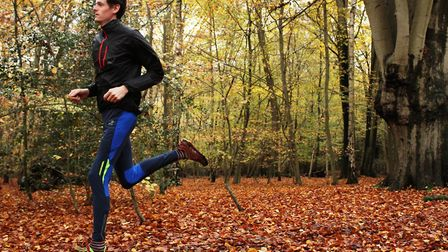 A run through the woods - hard to beat for lifting the spirits (photo: Charlotte Hussey)