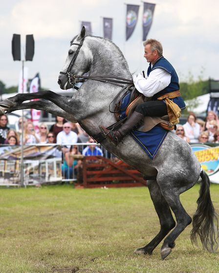 Atkinson Action Horses perform in the main arena