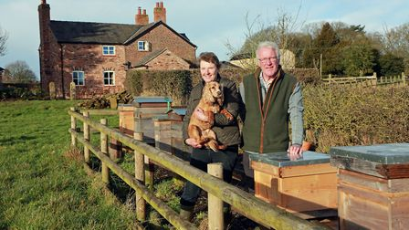 """Hosts Neil and Margaret Holding with """"harvey"""" their working cocker spaniel amongst the beehives"""