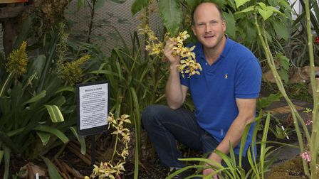Tom will continue to expand the collection in the orchid house (photo: Leigh Clapp)