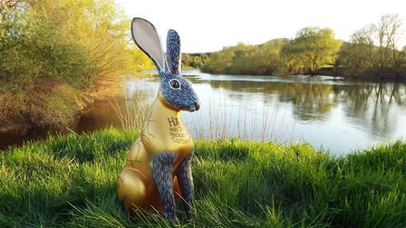 The Cotswold Life Hare by Candia McKormack