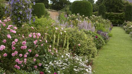 Densely planted herbaceous borders peak in summer (photo: Leigh Clapp)