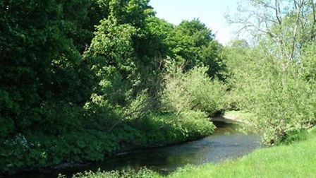 The River Bollin near Prestbury
