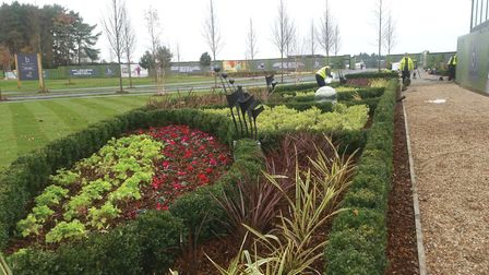 Planting and hedging at one of Benchmark's sites