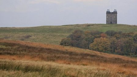 The Cage in Lyme Park by Tony Marsh