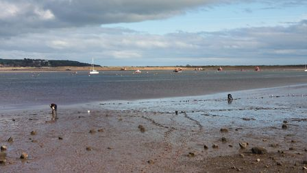 The Exe Estuary is one of the largest estuaries in Devon