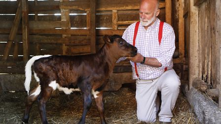 Charles Martell, with a 2 day old Gloucestershire cattle calf, from the herd whose milk is used for