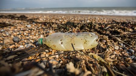 Tonnes of plastic waste are being swept into the seas, washing up on our beaches and entangling wild