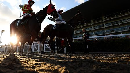 Sporting Boy ridden by Mr W. Biddicj and Petite Power ridden by Miss L. M Pinchin during day one of