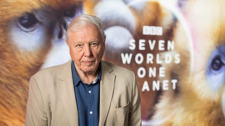 Sir David Attenborough attends the world premiere of 'Seven Worlds, One Planet', the latest landmark