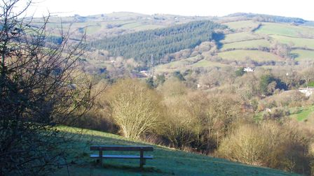 A well-placed bench in Belvidere Meadows Local Nature Reserve overlooks the view at the northern par