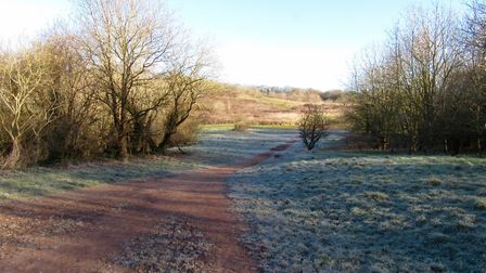 Early morning frost and bare winter trees in Mincinglake Valley Park - a bracing start