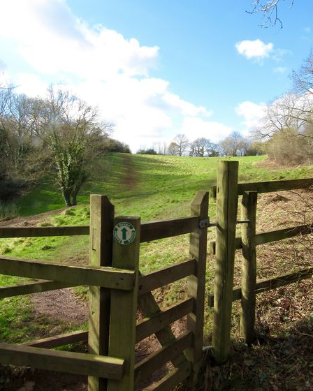 A lovely stretch of walking through Barley Valley Local Nature Reserve