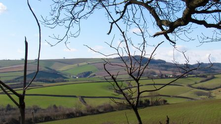 Country views from Hambeer Lane on the Alphin Brook section of the Circle. Look the other way for vi