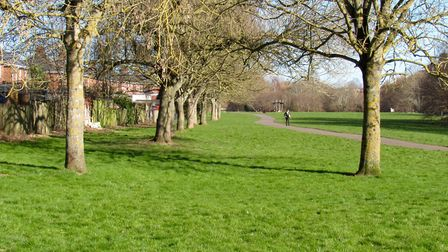 Ludwell Valley Park is a delightful area adjacent to the busy Topsham Road
