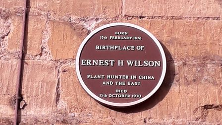 Ernest H Wilson plaque on the High Street