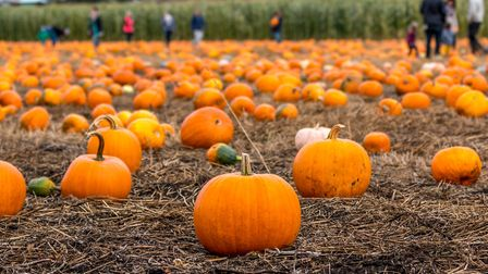 There's plenty of Halloween fun to be had in the Cotswolds (c) rand22 / Getty Images