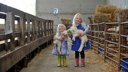The lambing weekend at the Royal Agricultural University's Harnhill Farm, Cirencester (c) Mikal Ludl
