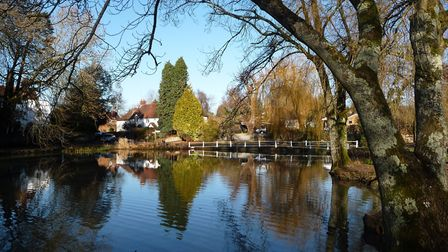 Village pond, Buriton