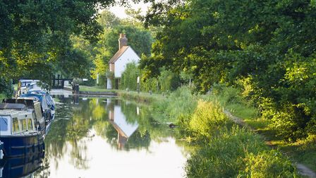 The River Wey (Photo by National Trust)