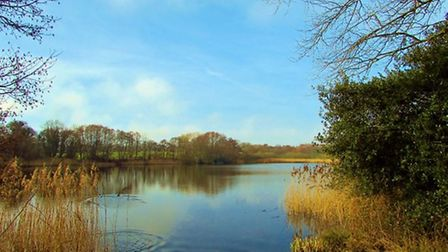 Budworth Pool by Paul Taylor