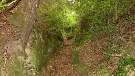 An enticing sunken bridleway leads from the lane at the start of the walk