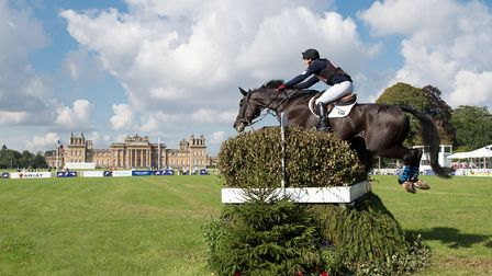 Alexander Peternell (RSA) & AP Topstar - Cross Country - CCI3* - The Blenheim Palace International H