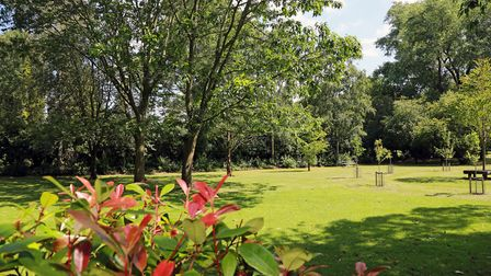 Head to Halecroft Park should you need a bit of green space
