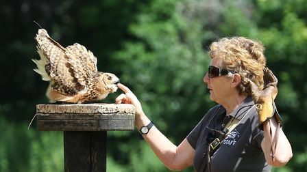 Jemima Parry-Jones with one of the owls at the International Centre for Birds of Prey, near Newent (