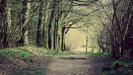 Macclesfield Forest by Hollie Beresford