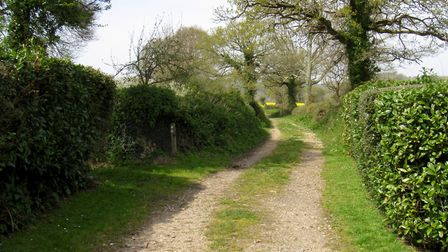 The East Devon Way rises out of Sidbury on its way to White Cross
