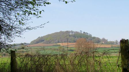 Looking up to Sidbury Castle from the path through Sidford