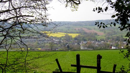 Beautiful views across Sidbury from the final stage of the walk the footpath aims to the left of th