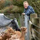 Adam with Albion cattle and Golden Guernsey goats