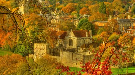Wolvesey Castle and Winchester College from St Giles Hill in Winchester (Photo by Andy Latt)