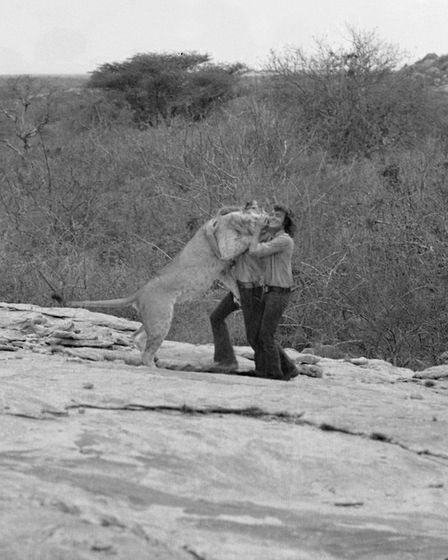 John Rendall and Ace Bourke were filmed during their emotional reunion in Africa with Christian]